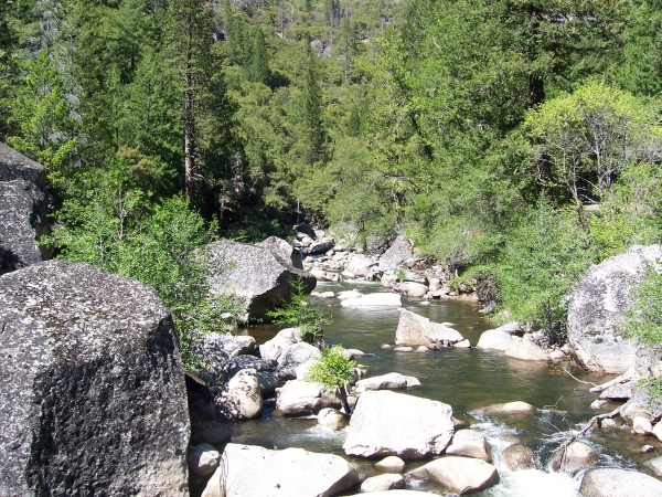 The mokelumne river isn 39 t it beautiful read more for Mokelumne river fishing